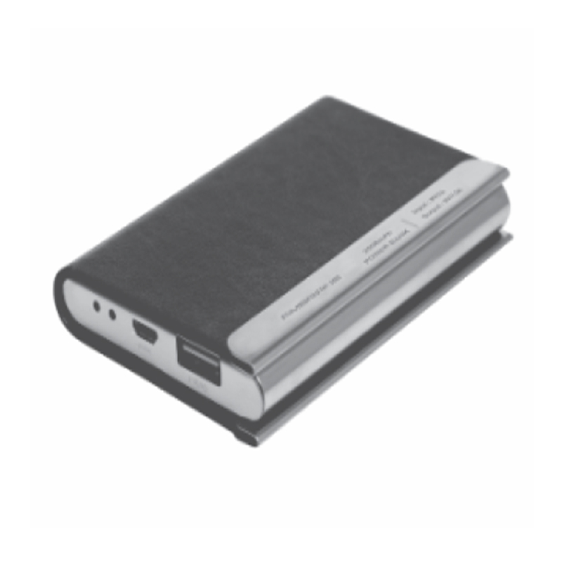 Ambrane PCH22 Card Holder..
