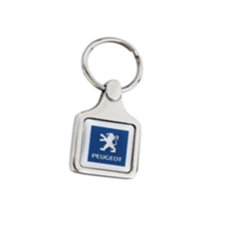 Z262 Special Keychains
